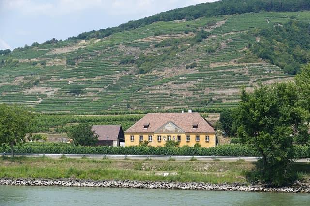 オーストリアワインの産地