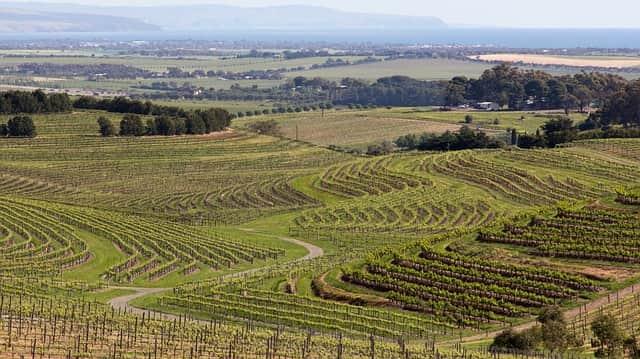 オーストラリアのワイン産地