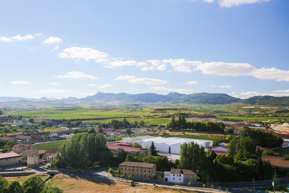 スペイン・テンプラニーリョの産地