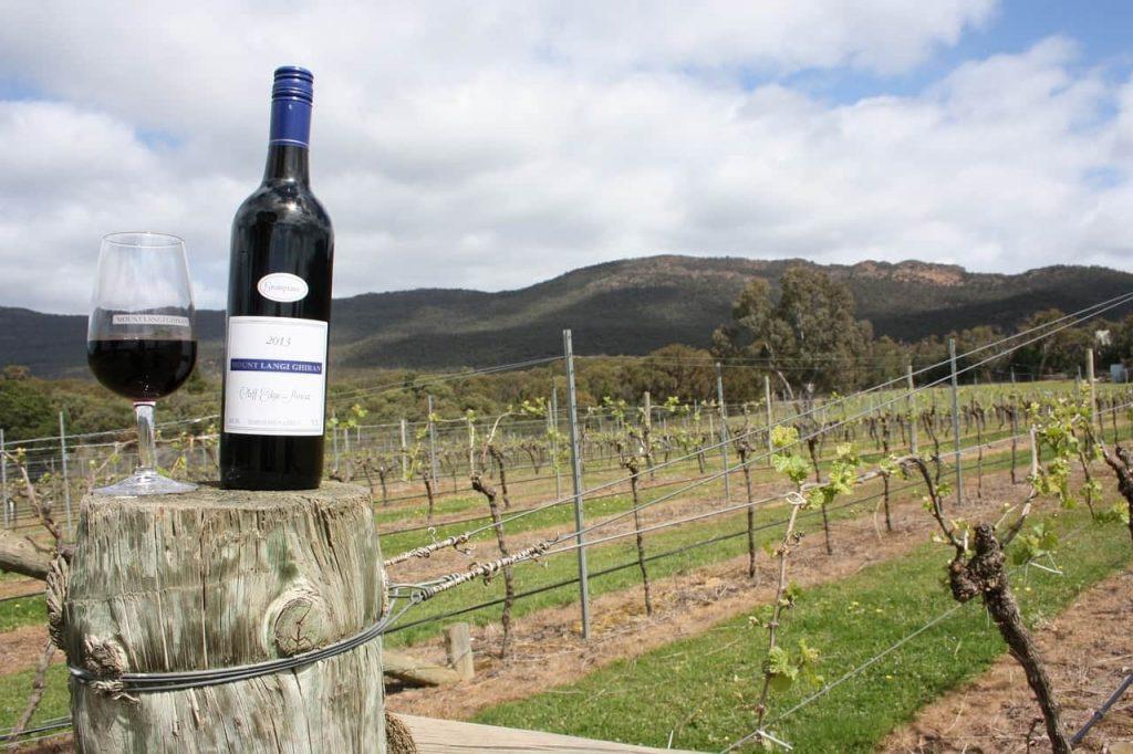 オーストラリアワインの特徴・おすすめ銘柄5選【主な産地や品種も解説】