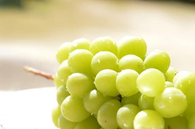 【おすすめ白ワイン7選】華やかでリッチな「ヴィオニエ」の魅力を解説!
